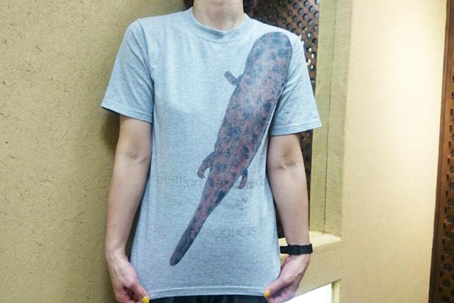 サンショウウオTシャツ02